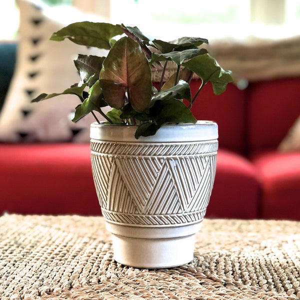 Cream colored graphic houseplant planter with tribal etching.