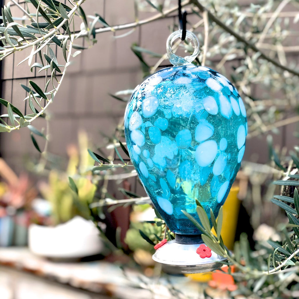 Aqua Hummingbird Feeder in Balloon style.