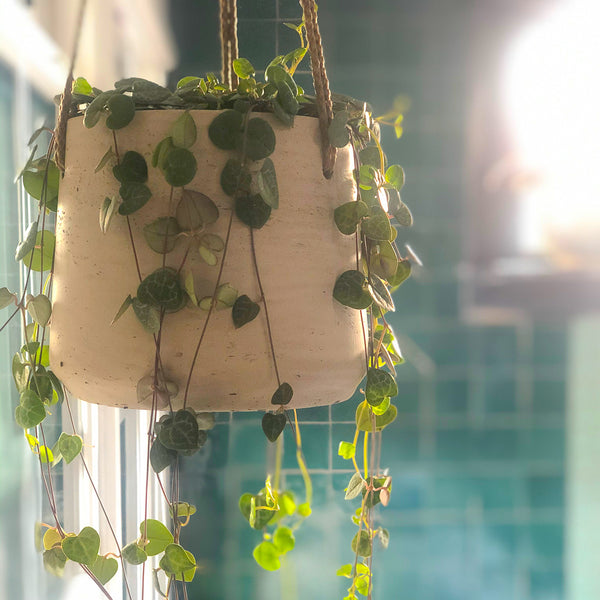 Patt Hanging Pot