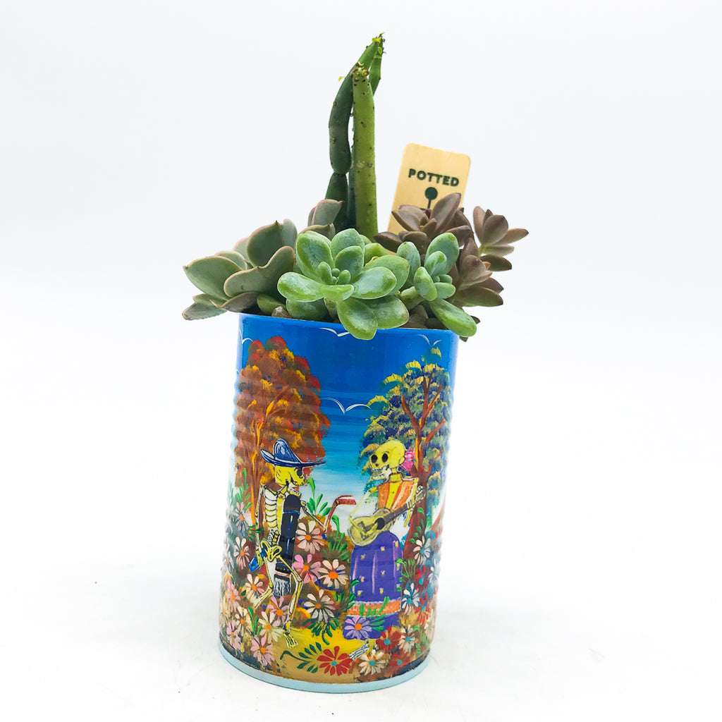 Dia De Los Muertos skull planter with assorted succulents