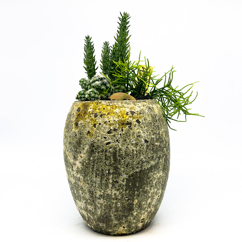 Speckled cement planter with assorted succulents