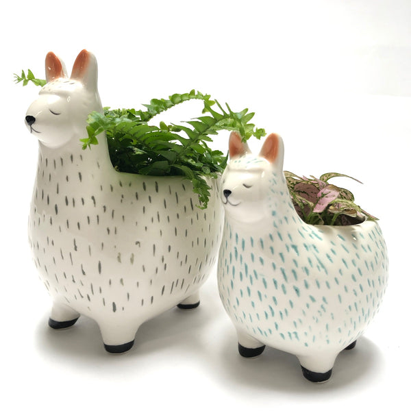 Large and small llama character planters.