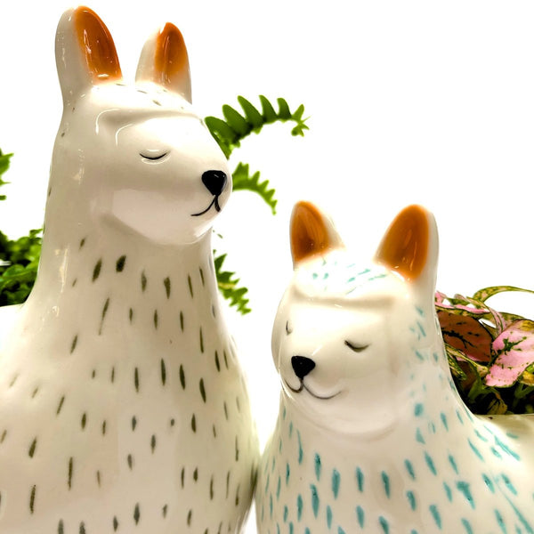 Close shot Large and small llama character planters.