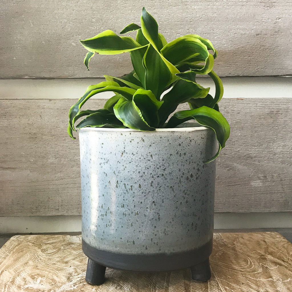 Lova Footed Pot
