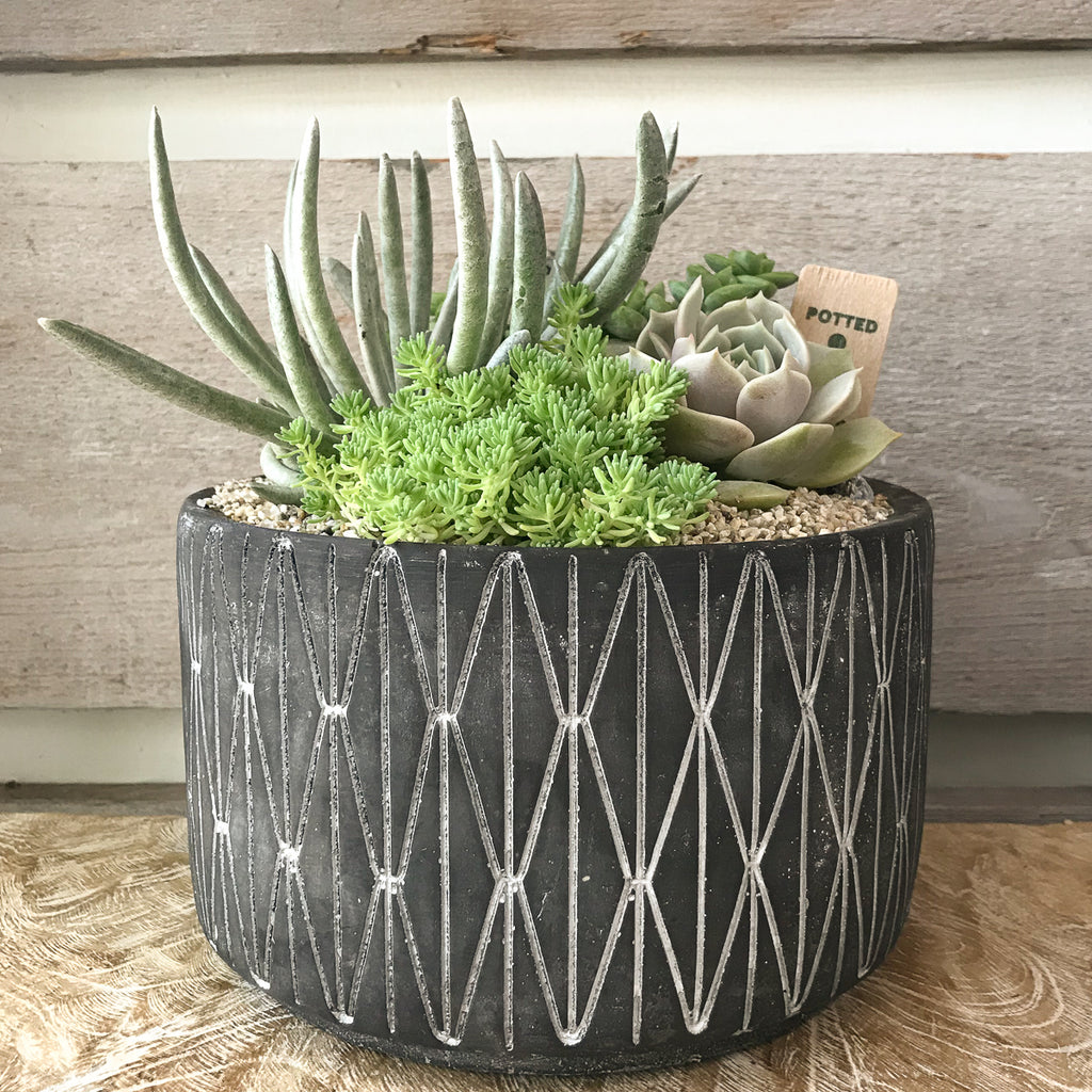 Black and White Geometric Planter