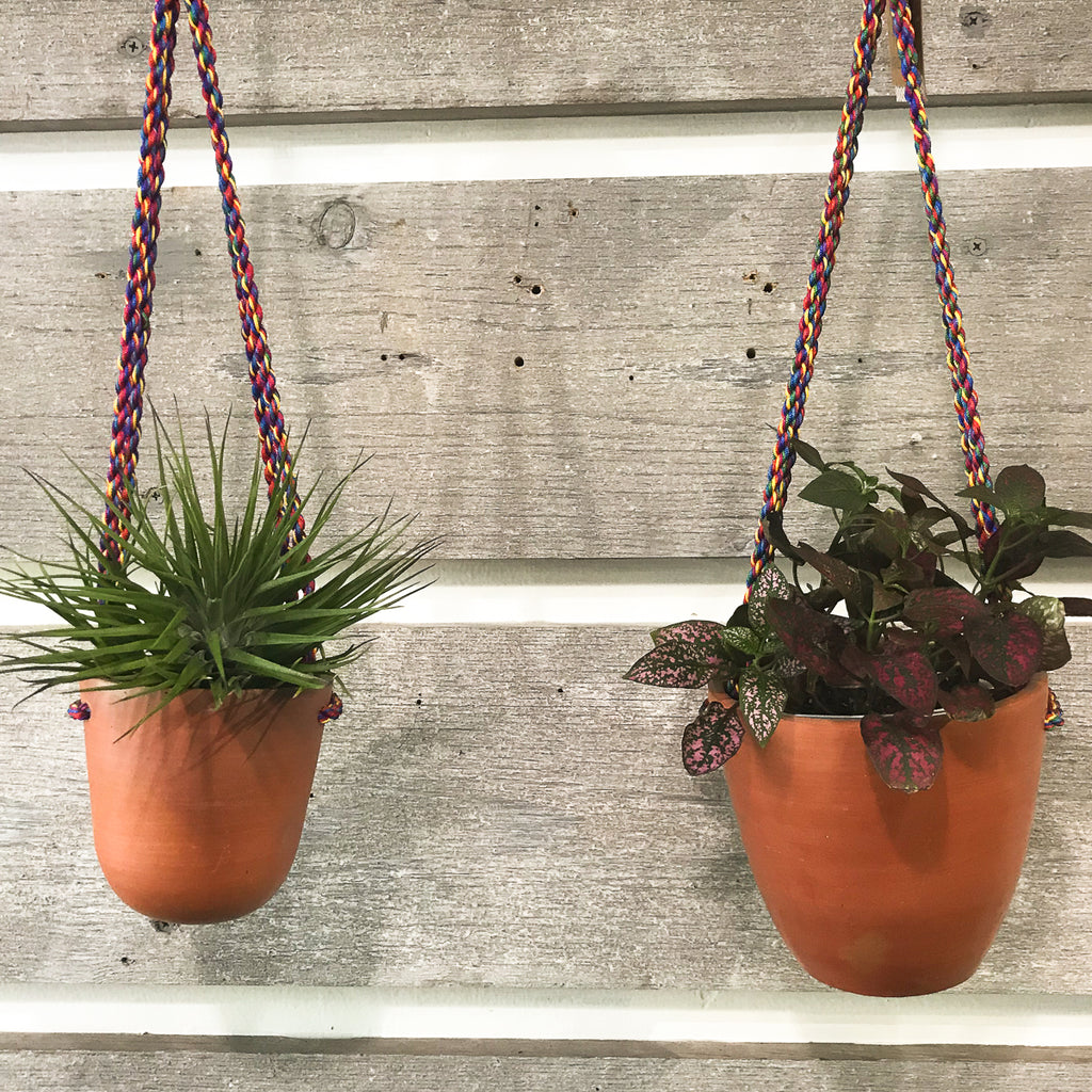 terracotta cup planter with a colorful, sturdy, twisted cord hanger