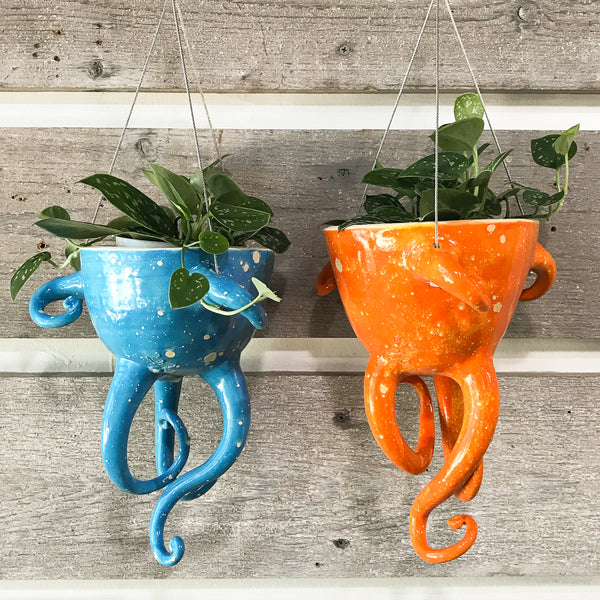 Tentacle Hanging Planter