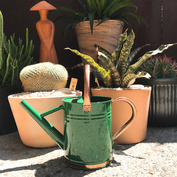 Gardman Green Watering Can