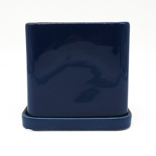 Cobalt Blue Svek Cube with Saucer