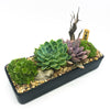 Black rectangle planter with assorted succulents