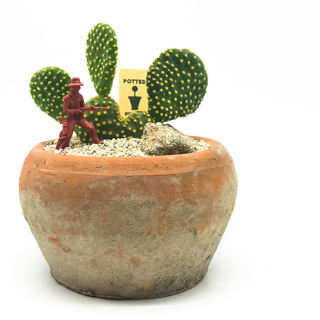Egyptian terra-cotta planter with a cactus and a cowboy