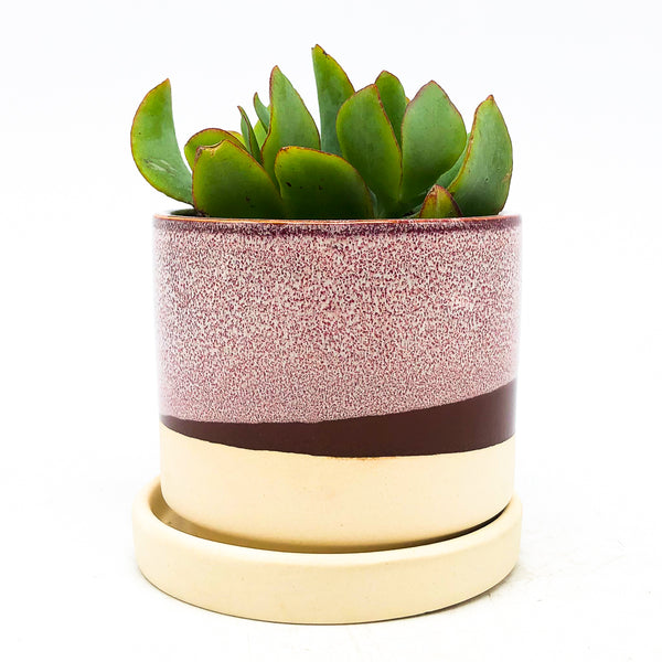 Minute Planter with Saucer - Burgundy