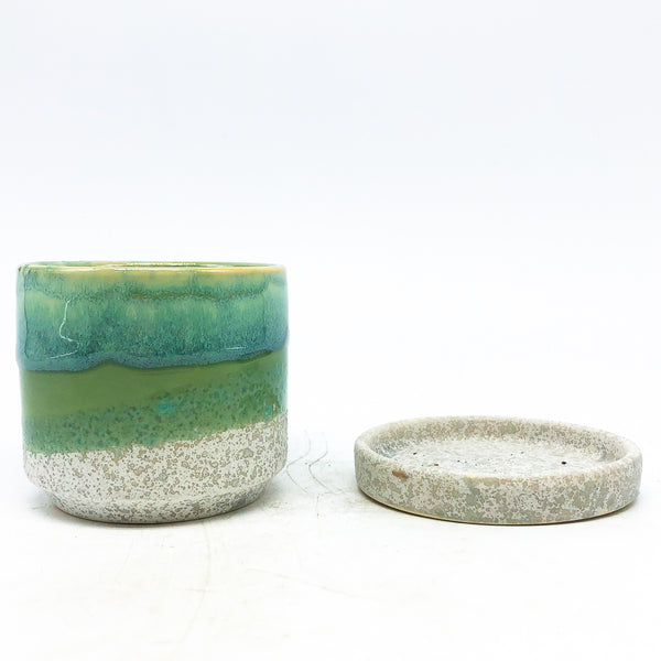 Minute Planter with Saucer - Green/Cement