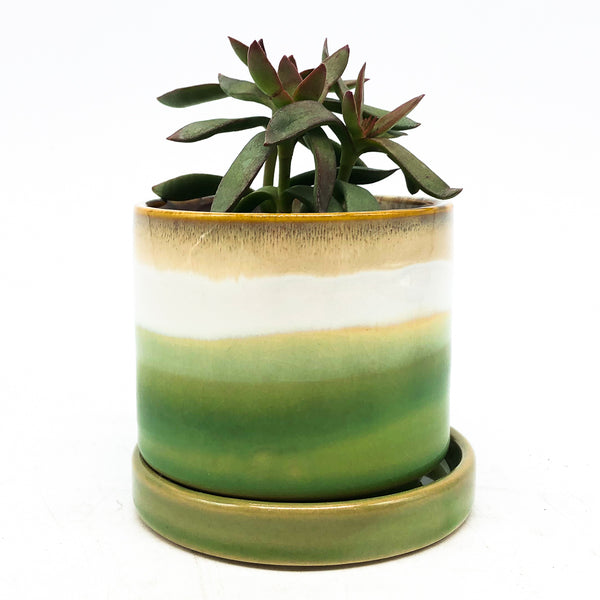Minute Planter with Saucer - Green Layers