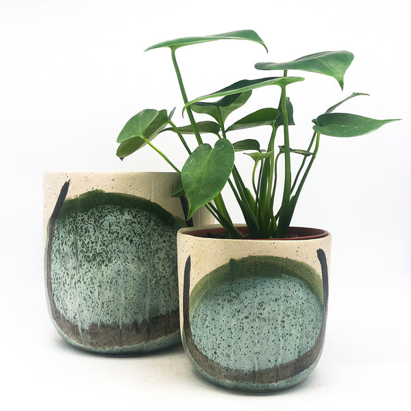 Finn Pot with monstera deliciosa