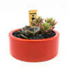 Round red planter with assorted succulents