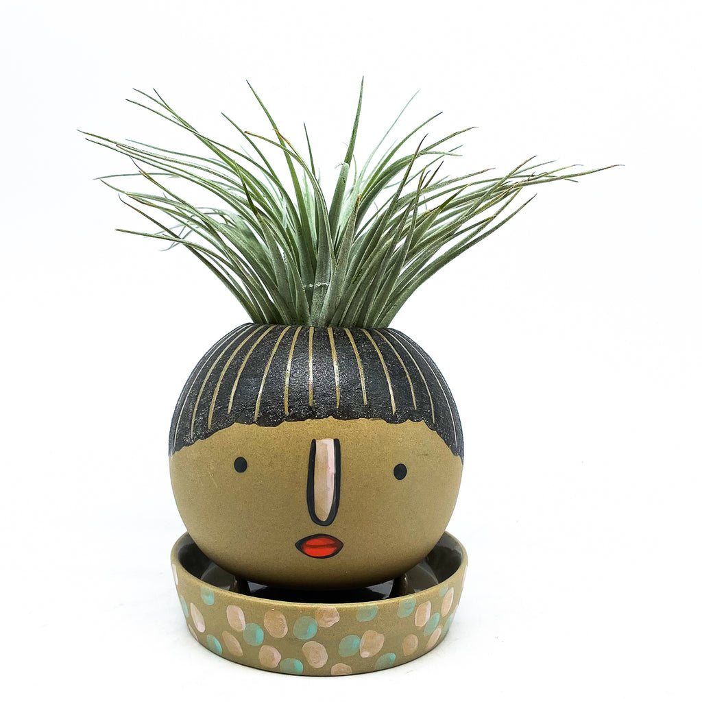 Etta Pot with Saucer - Small and an air plant