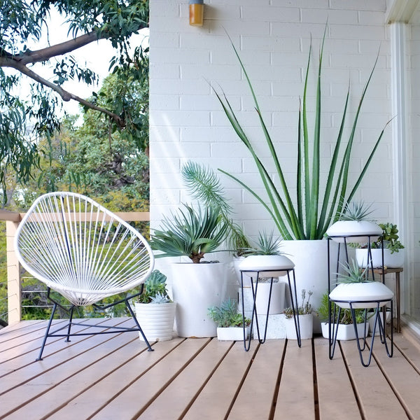 Modern arrangement of white planters on a wooden deck.