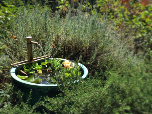 Bamboo fountain bowl in a natural looking garden.