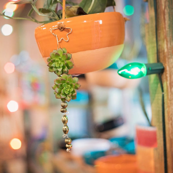 Handmade succulent ornament made in a Potted workshop.