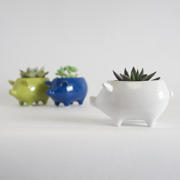 Three piggy planters in white, chartreuse and blue.