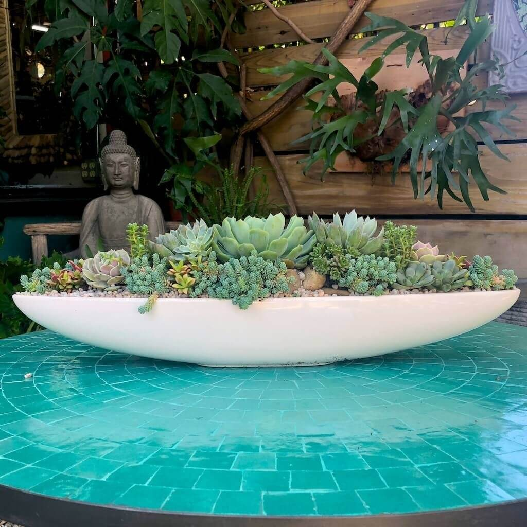 White Bauer canoe filled with succulents on an aqua moroccan tiled table.