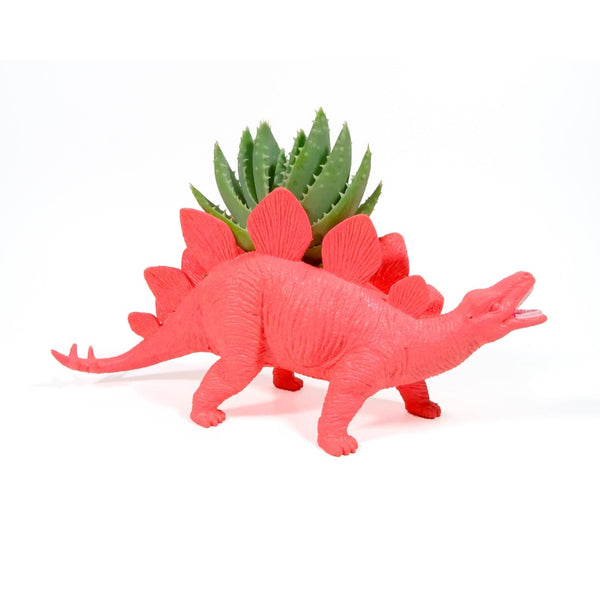 Hot Pink Stegosaurus Dinosaur planter planted with a succulent.