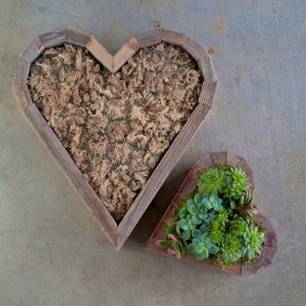 Succulent filled wood edged Heart-shaped hanging planter plus larger version.