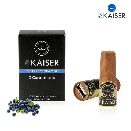 Electronic Cigar,2 Pack,cigee,Bluberry