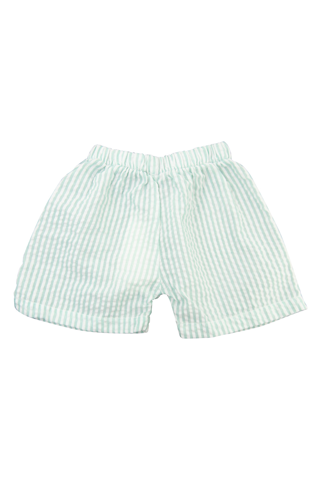 Boys Mint Seersucker Shorts