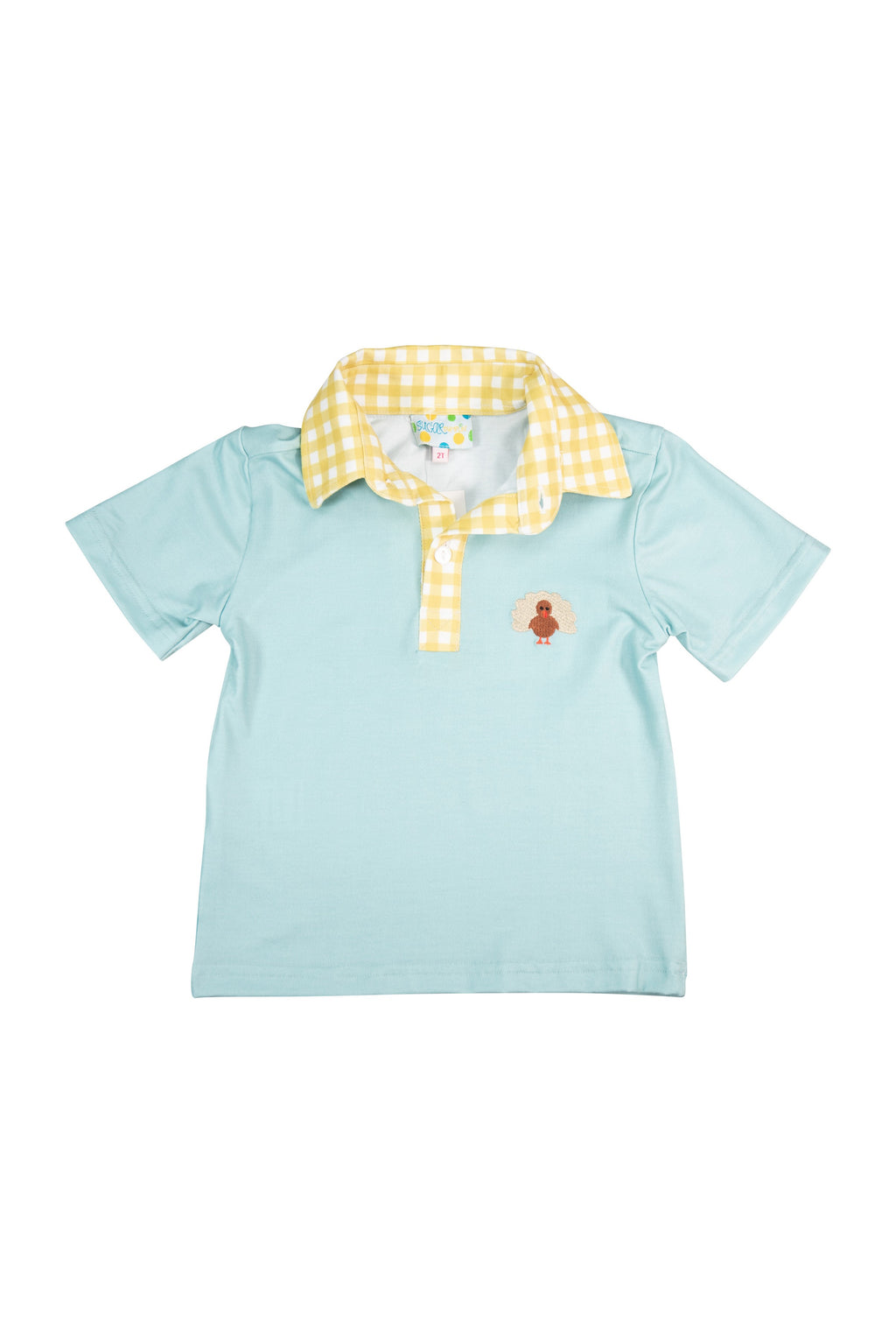 Boys Embroidered Turkey Shirt Only