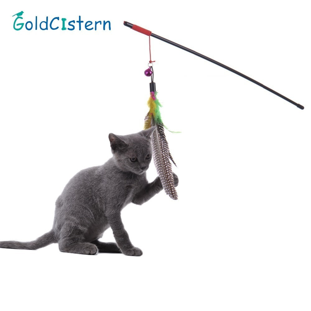 Feather Teaser Cat Toy - Pet Gear Solutions