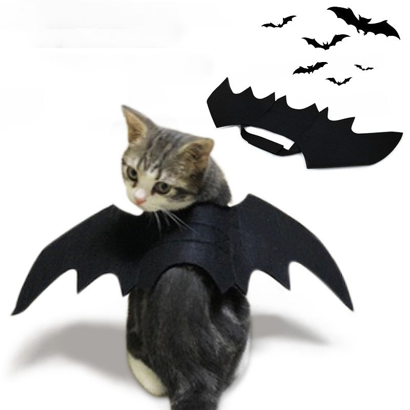 Cat Bat Wing Halloween Costume