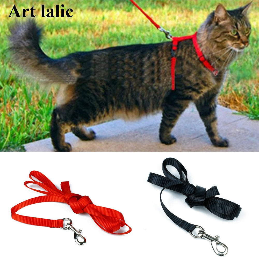 Cat Adjustable Harness And Leash Set - Pet Gear Solutions