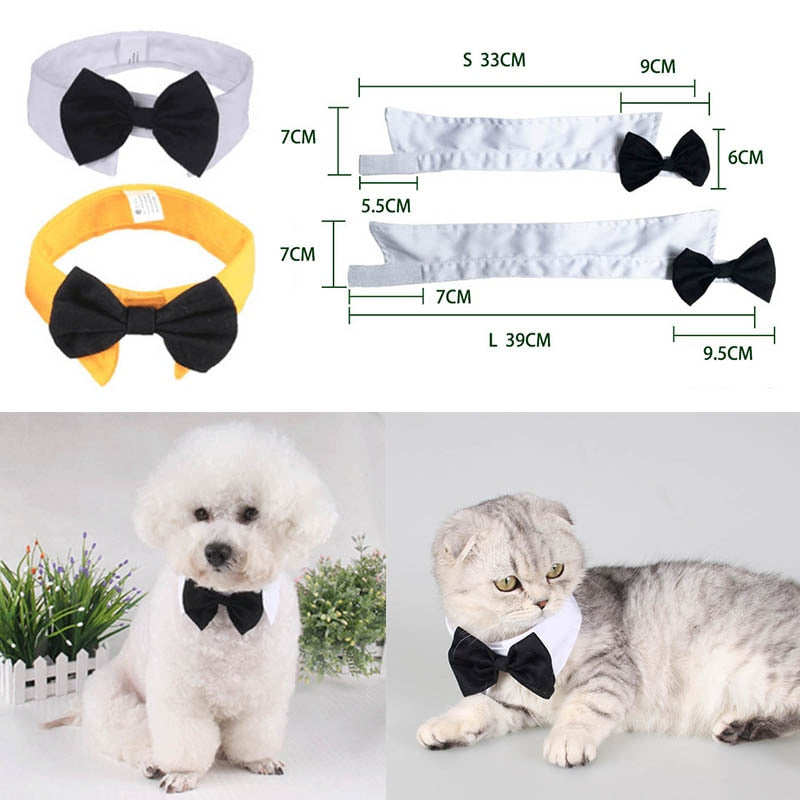 Dog and Cat Bow Tie Collar - Pet Gear Solutions