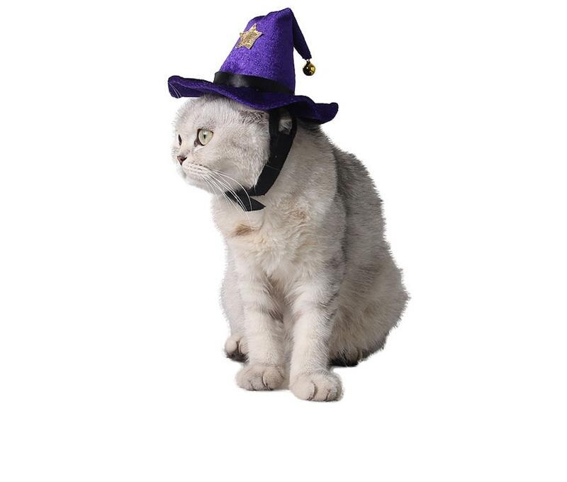 Halloween Magic Witches Cat Costume Hat