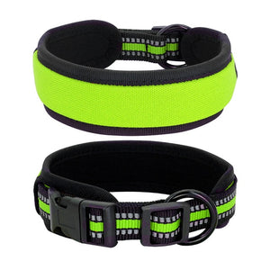 Glowing Dog Collar - Pet Gear Solutions