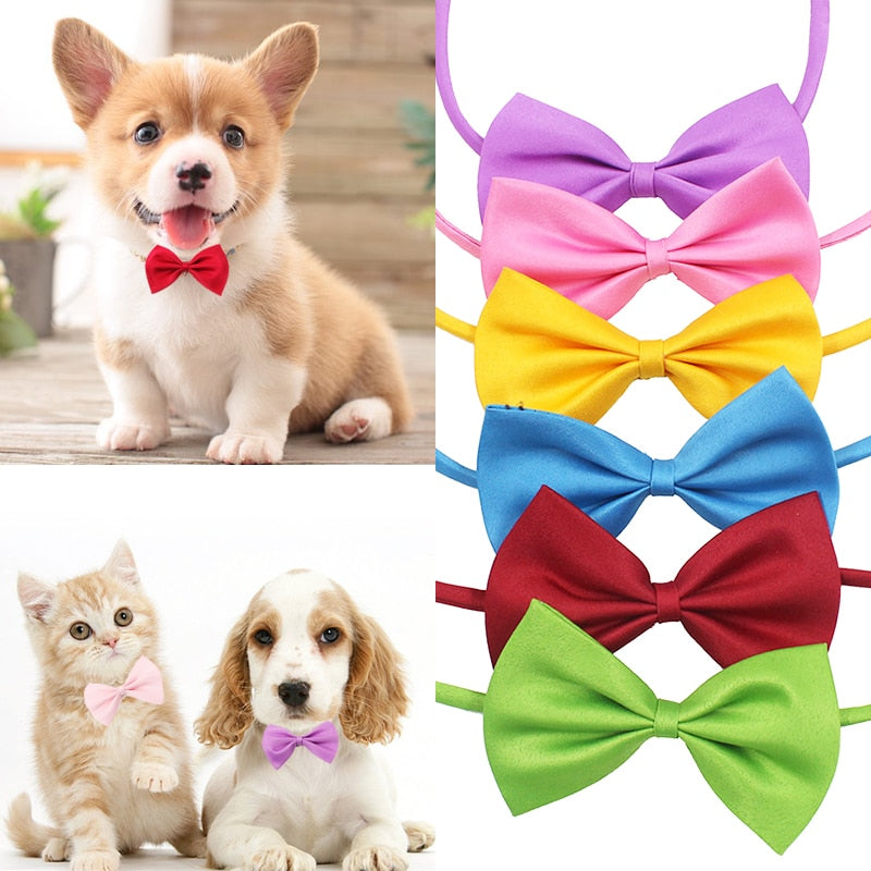 Bowknot Adjustable Dog or Cat Collar - Pet Gear Solutions