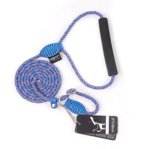 Striped Dog Collar Leash - Pet Gear Solutions