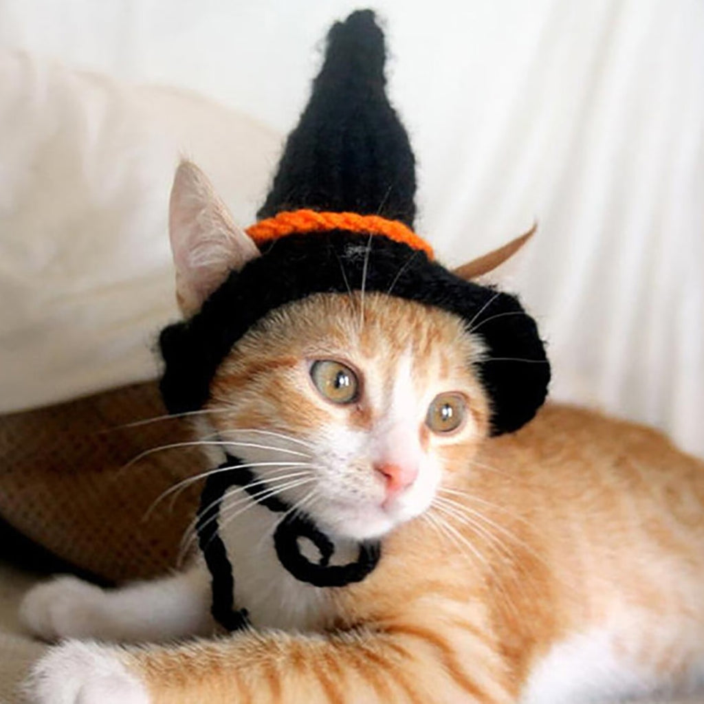 Halloween Witches Cat Costume Hat