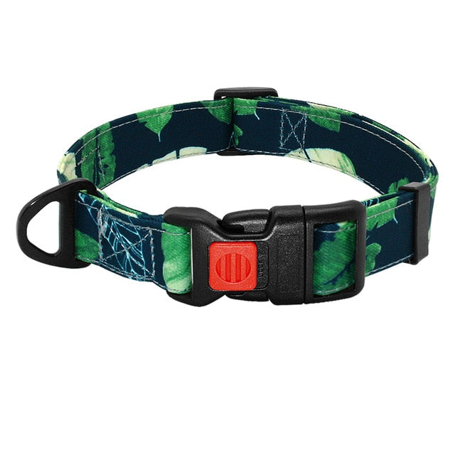 Graffiti Printed Adjustable Dog Collar - Pet Gear Solutions