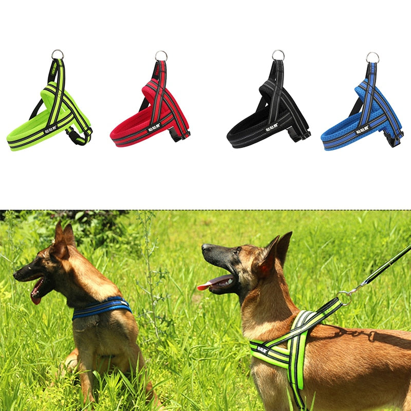 Adjustable Dog Harness - Pet Gear Solutions