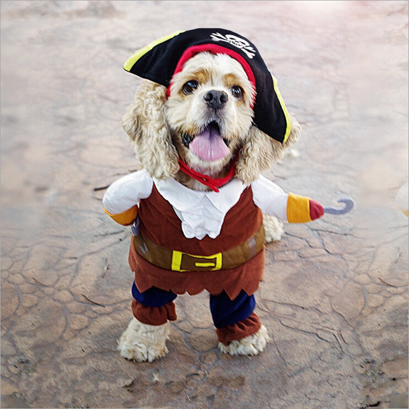 Halloween Pirate Dog Costume