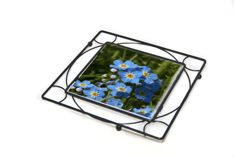 Forget-Me-Not Trivet