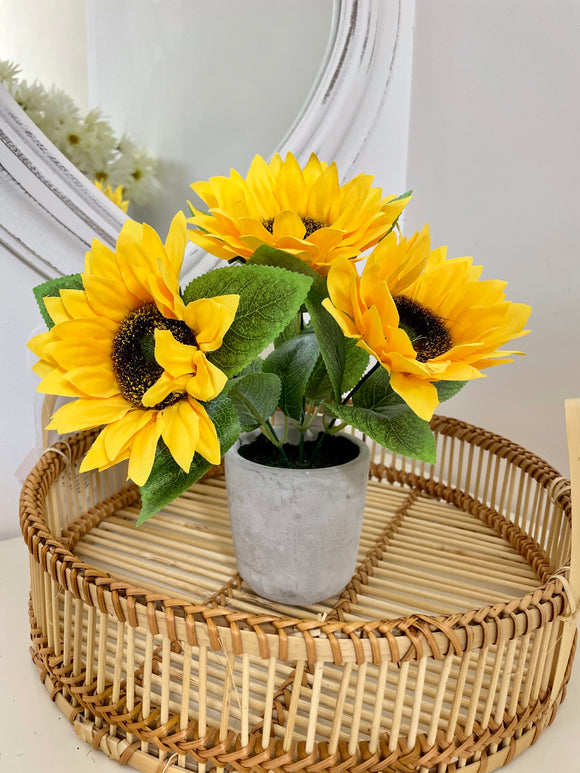 Faux Mini Sunflower Plant in Pot