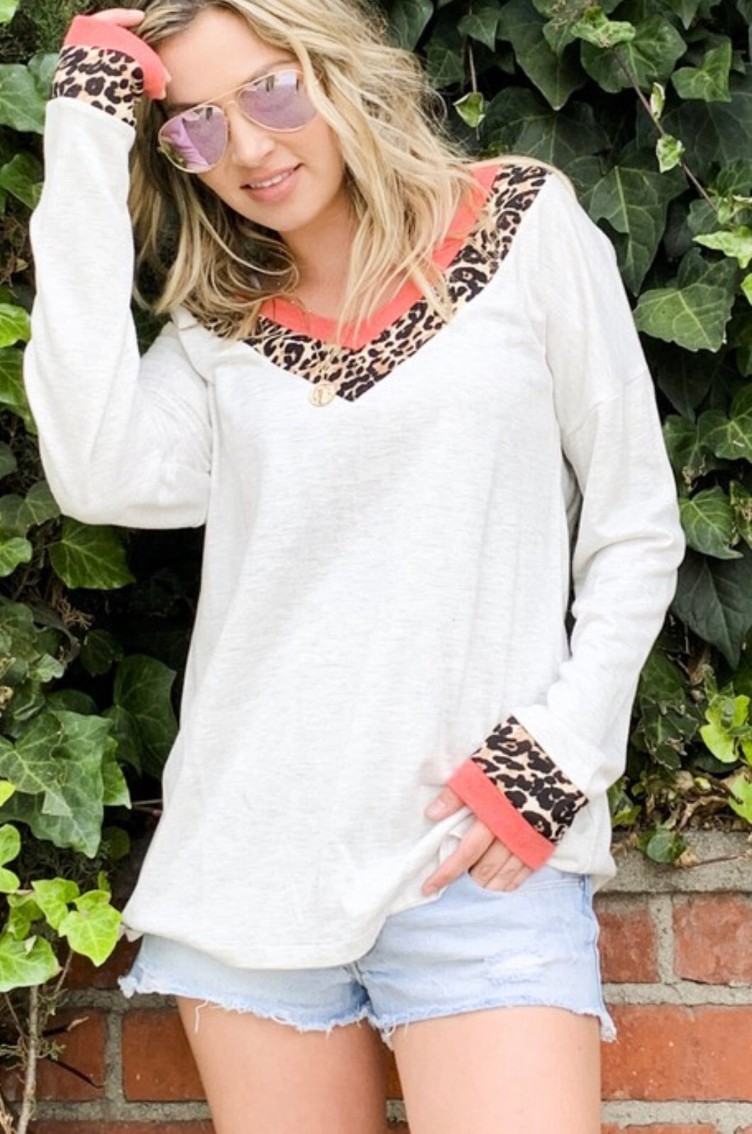 V-Neck Animal Print Long Sleeve Top
