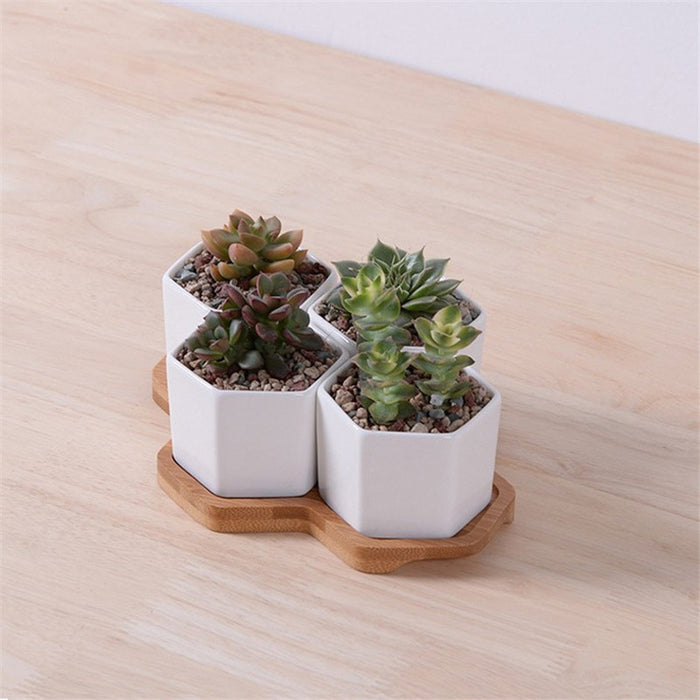 Hexagon Flowerpots White Ceramic with Bamboo Stand - Ocloq Shop