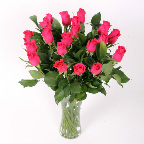 20 Pink Roses with Greenery
