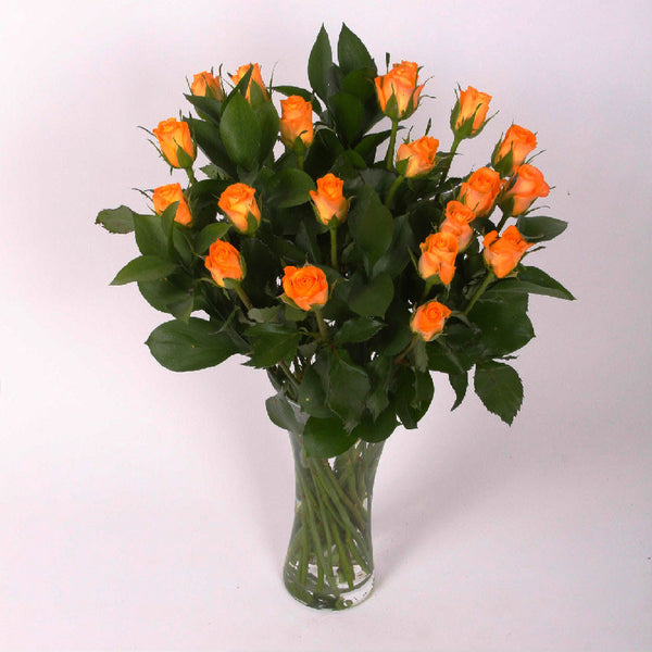 20 Orange Roses with Greenery