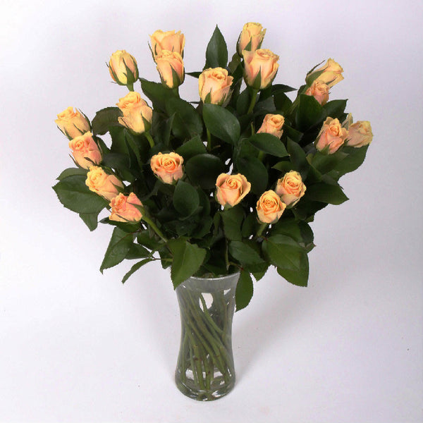 20 Peach Roses with greenery